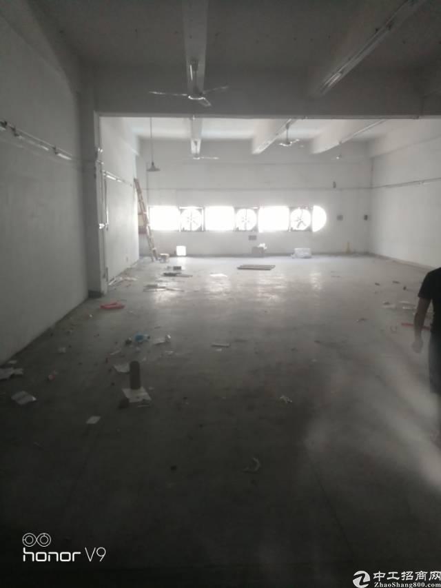 布吉南岭新出 小面积两三百平方厂房