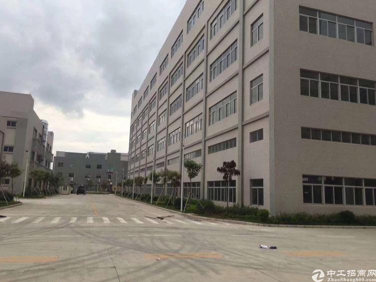 东莞沙田13200平米国有证红本厂房底价出售