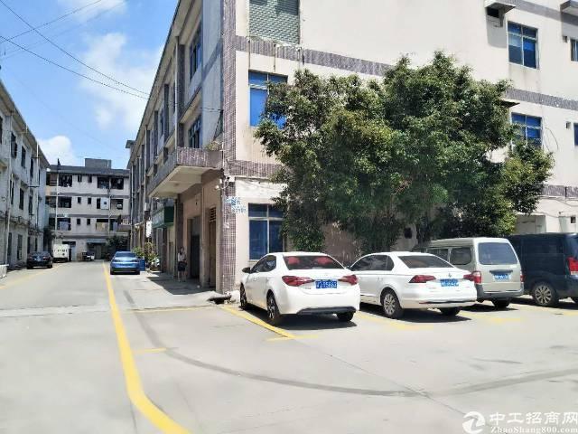 大田洋一楼800平米厂房低价出租-图2