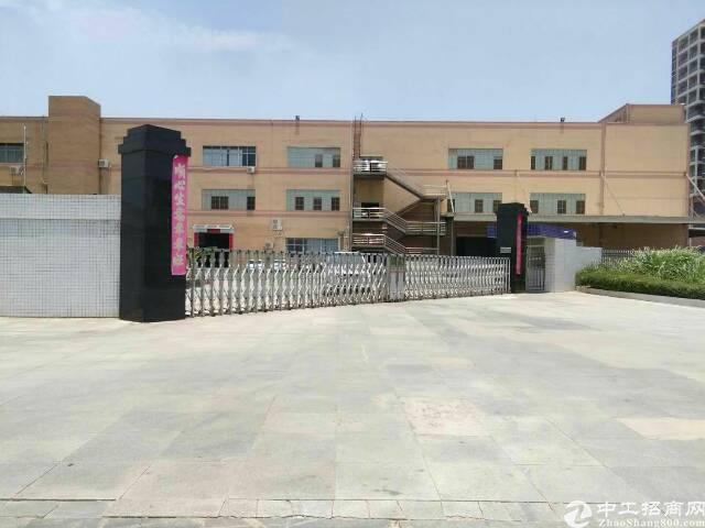 长安镇新出分租厂房1一3F54000平方带消防喷淋