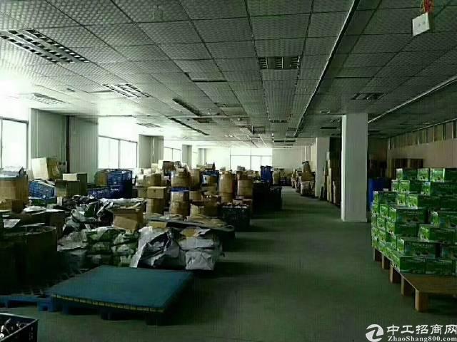凤岗镇金凤凰新出独门独院带牛腿标准厂房一楼1000平