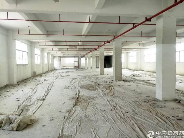 新圩全新独院标准厂房出租