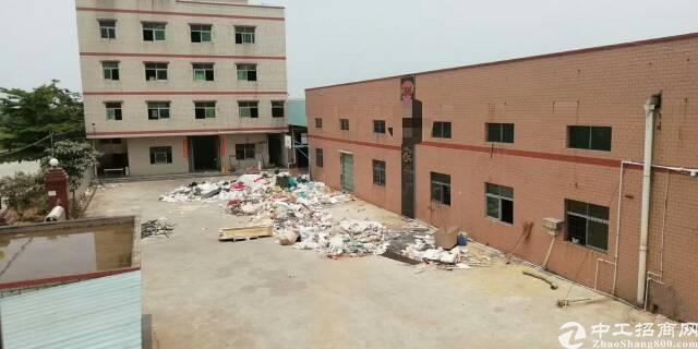 横沥镇新出原房东单一层钢构独院厂房2600平方米出租