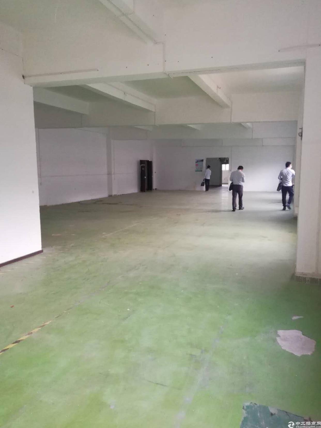 龙华龙胜地铁口旁新出单层1500平,原房东-图5