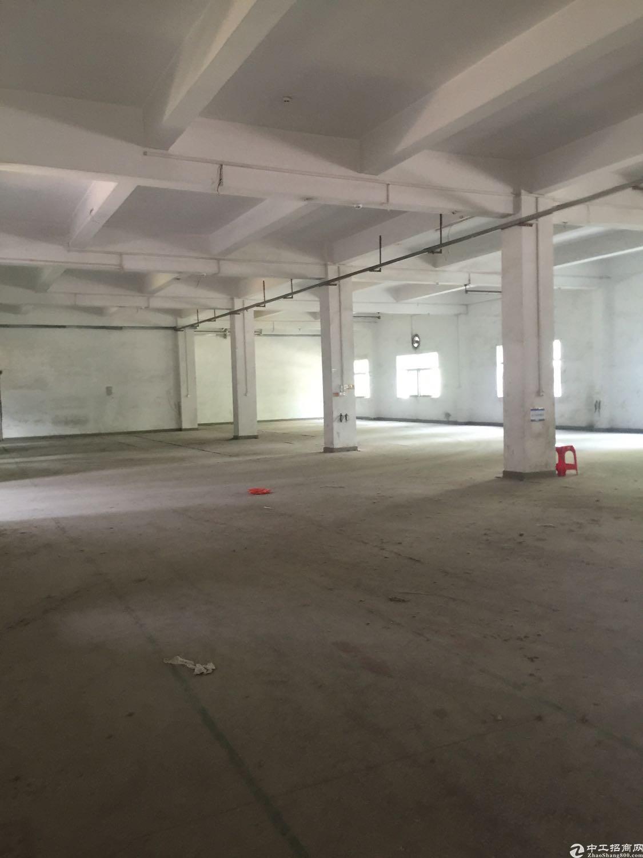 大朗原房东金装修厂房