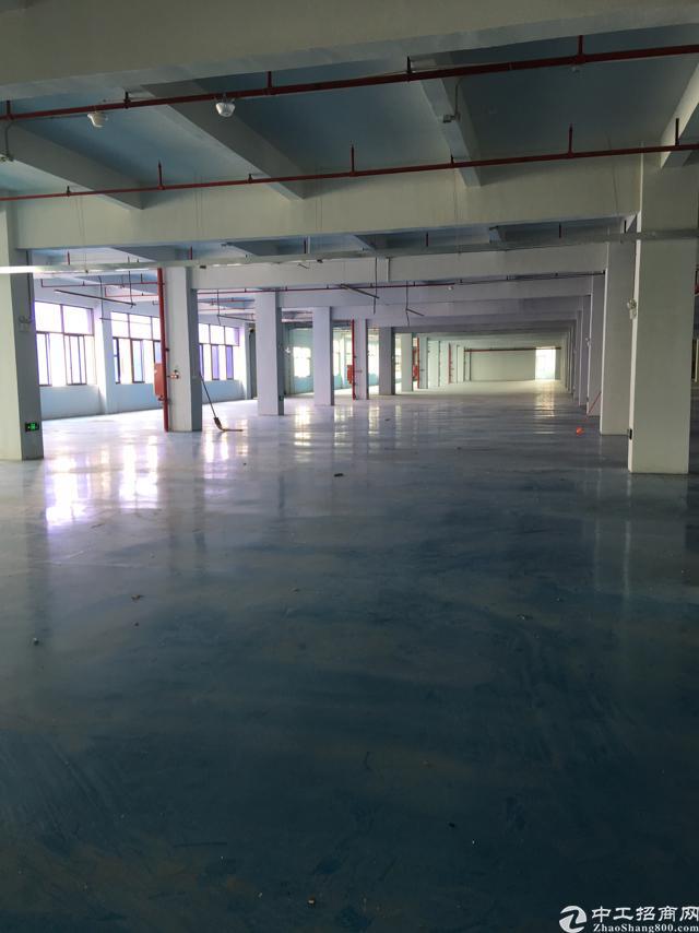超靓厂房整层5200平方米