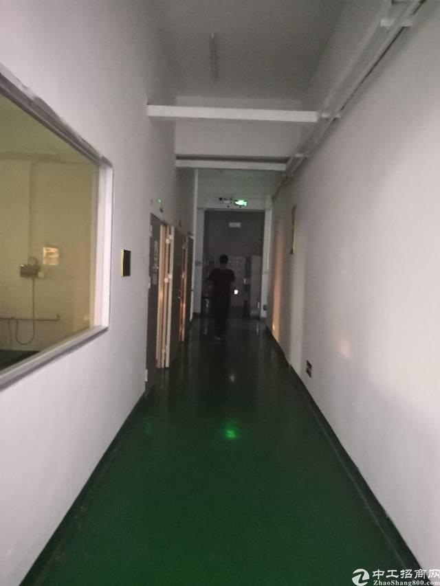 观澜福民龙观快线边上新出1600平带装修厂房