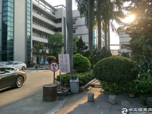 万江独门独院厂房6500平方招租