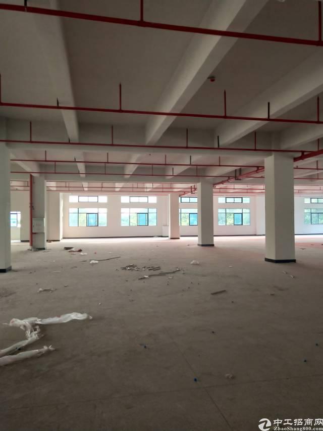独院标准厂房8000平方出租