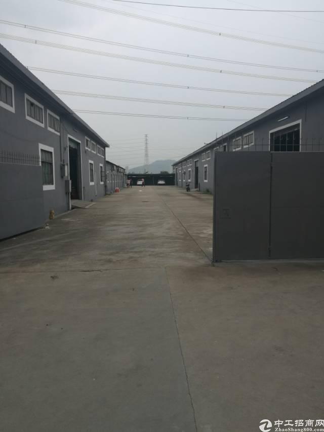 新塘独院钢结构一楼可分租