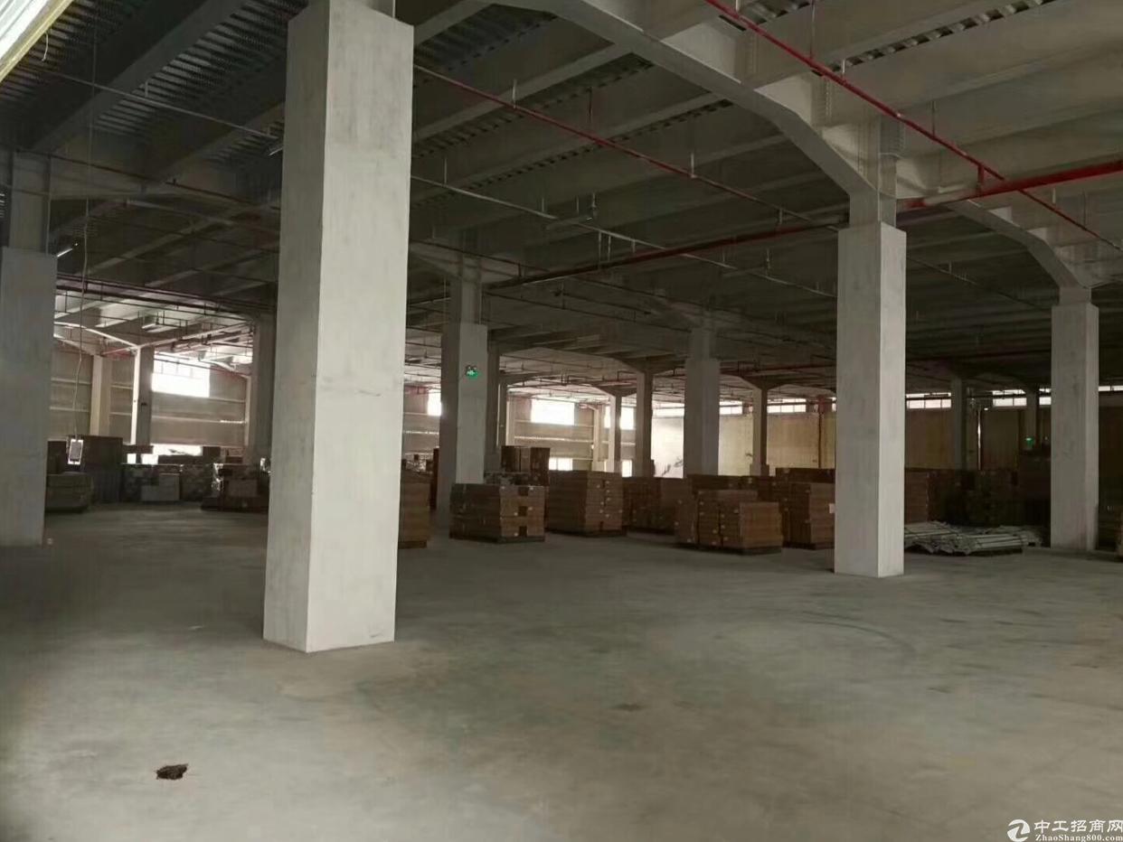 坂田空地大厂房钢构一楼出租