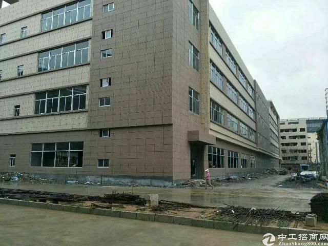 新出重工业厂房1-4层2万平方,每层5000平方