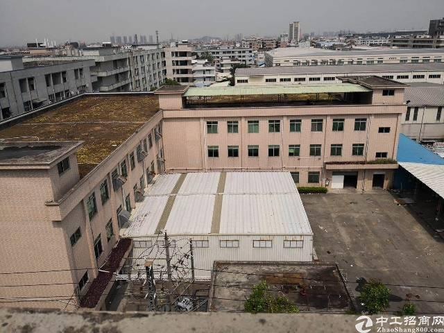 厚街新出独院标准厂房18000平方米招租