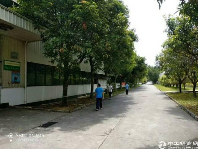 坪山超大独院钢构厂房42000平米出租