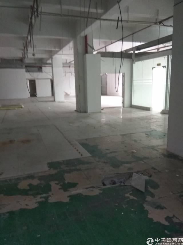 龙华龙胜路附近500平厂房招租,面积实在使用率高