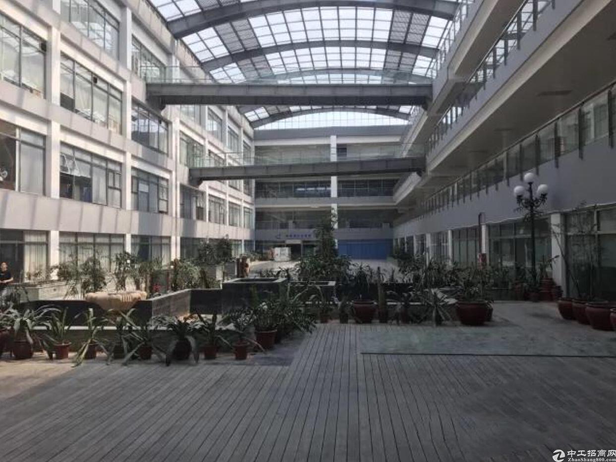 坂田花园式红本厂房5800平方大小分租-图3