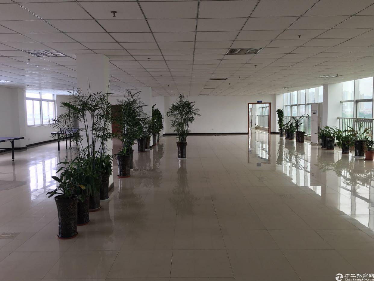 龙泉经济开发区车间4300 办公1000平-图3