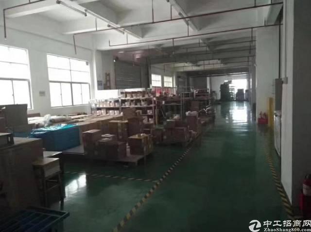 观澜福民楼上整层精装修厂房