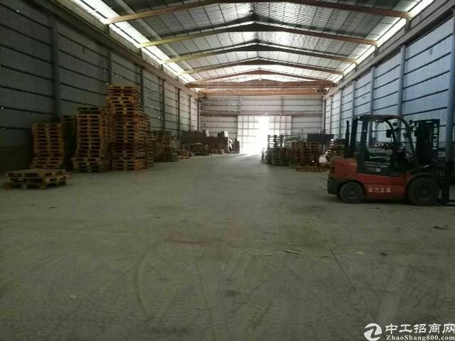 福永镇新和一楼3000平方钢构招租-图4