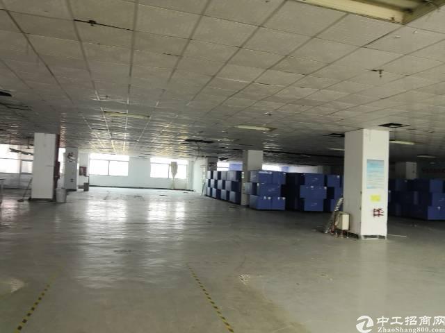 福永凤凰新出原房东厂房4000平,实际面积没公摊