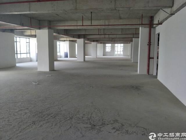 虎门新出厂房位于沿江高速出口处500米位置好,好招工,交通便