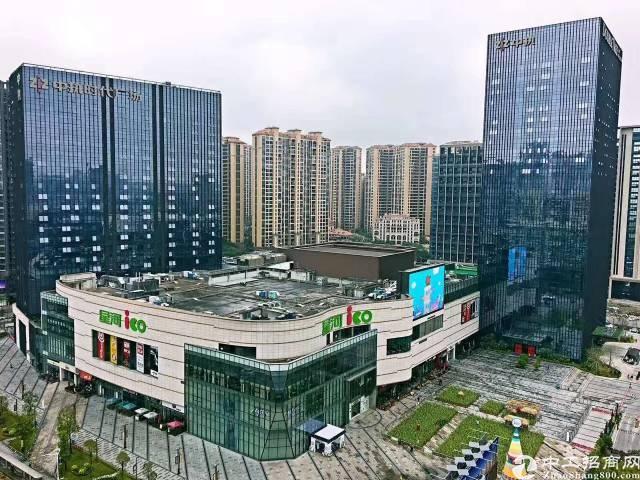 龙华中心地段5A级写字楼出租(大小可分)