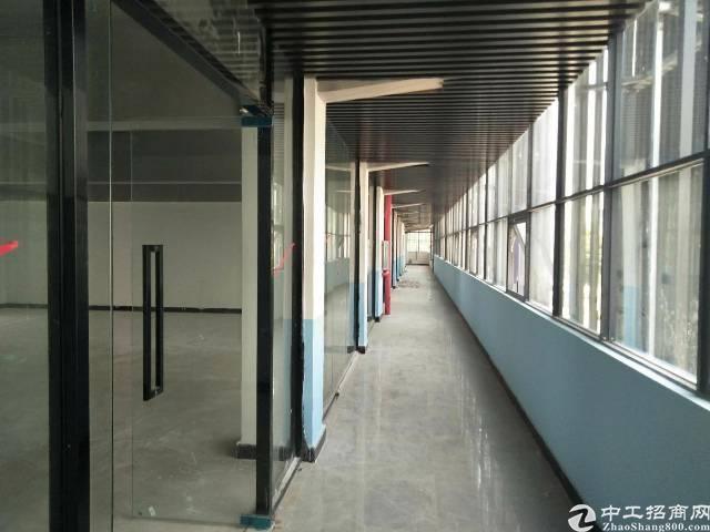 公明长圳新出楼上700平带装修