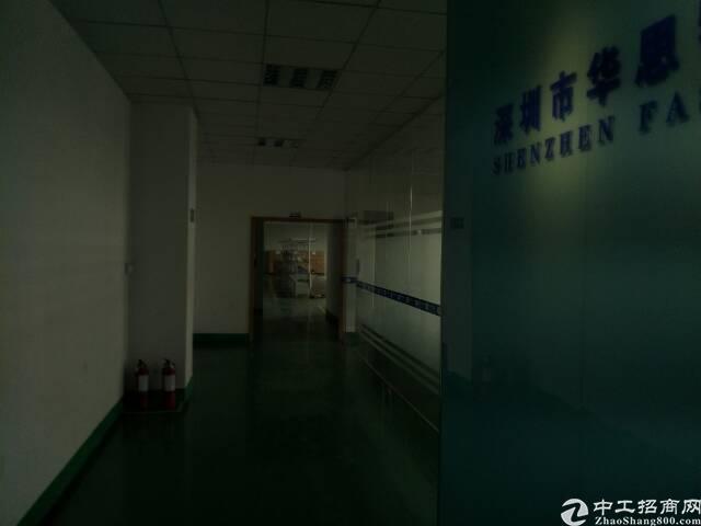 观澜库坑同富裕工业区新出带装修厂房580平招租-图3