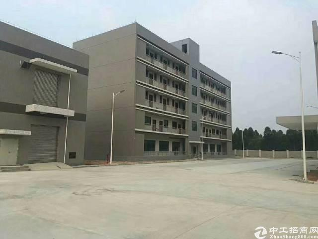 石湾镇重型工业园区分租1200平方-图3