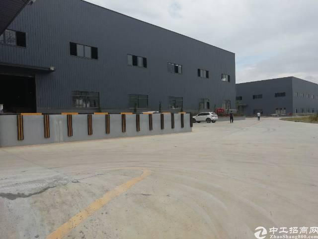 厚街全新钢结构厂房