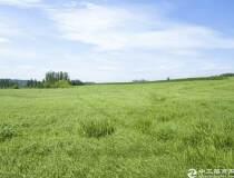 贵州省贵阳边国有地800亩出卖