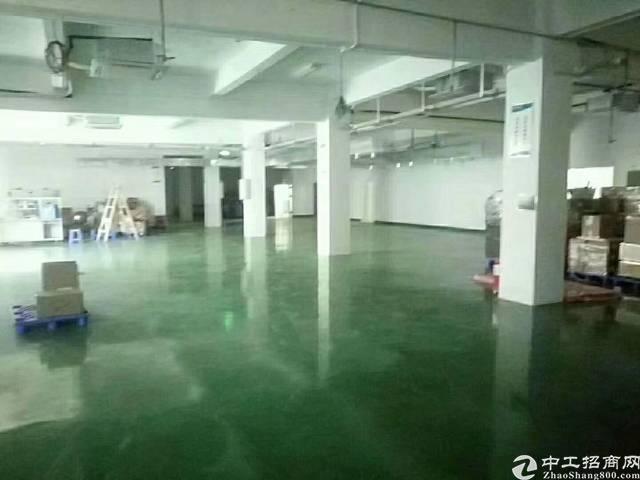 新出原房东1-3层每层1130平米厂房出租