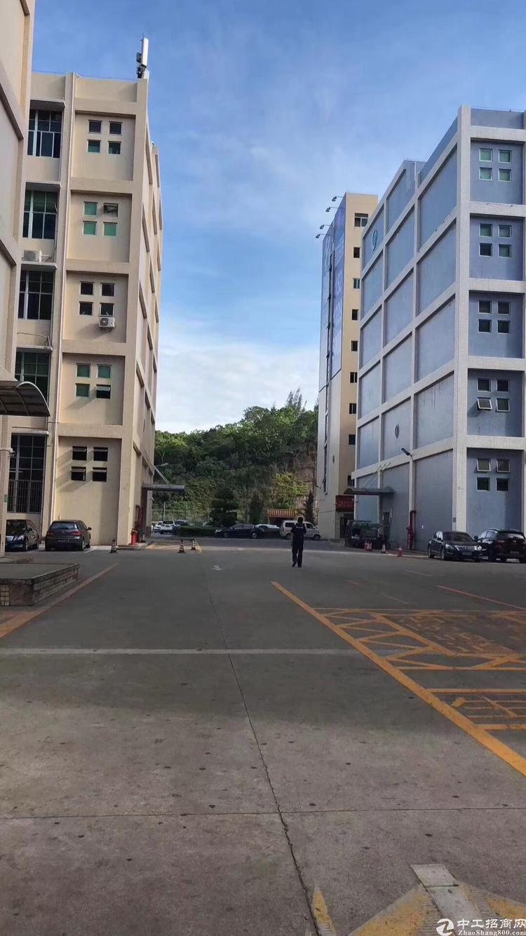 龙华大浪商业中心出1680平原房东房源