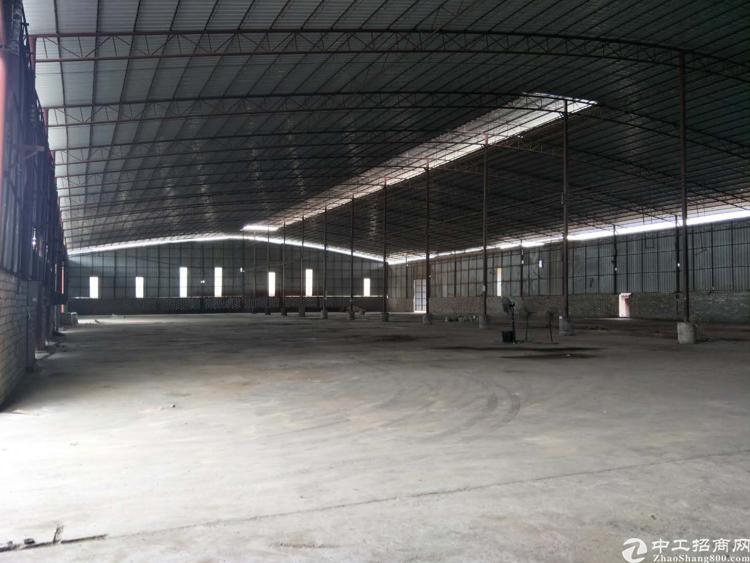 惠州惠东单一层钢构厂房出租,滴水8米可以做污染行业