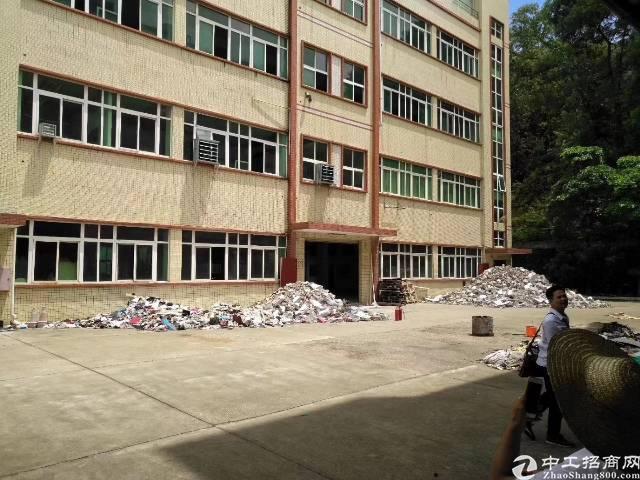 凤岗五联靠平湖观澜新出独院厂房,4层4000平火爆抢租