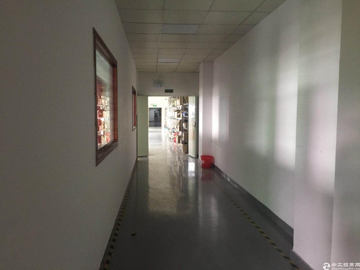观澜梅观高速出口处楼上850平带装修厂房招租
