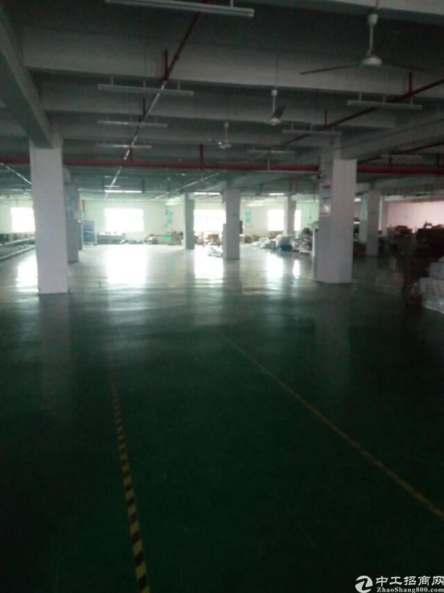 惠州惠环工业区1200平标准厂房出租