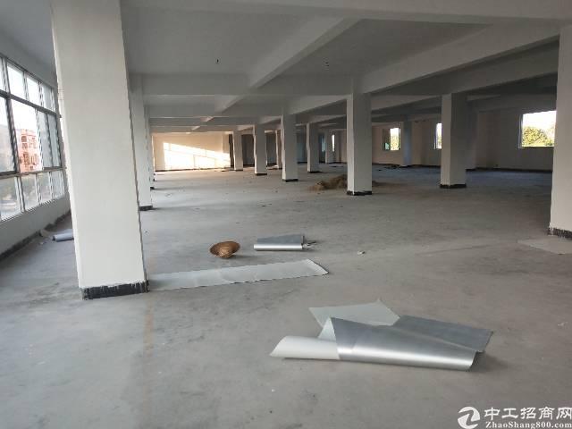 标准厂房分租二楼,四楼