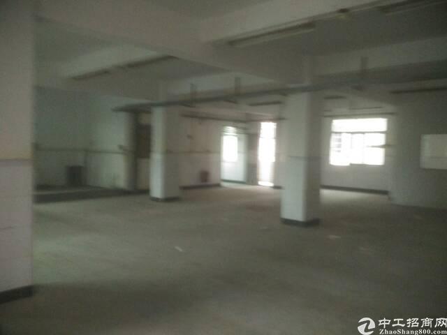 750平独栋标准厂房招租。毛织、电子行业看过来
