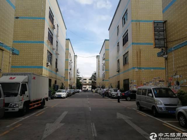 龙华汽车站后面新出原房东优质厂房3楼1600平