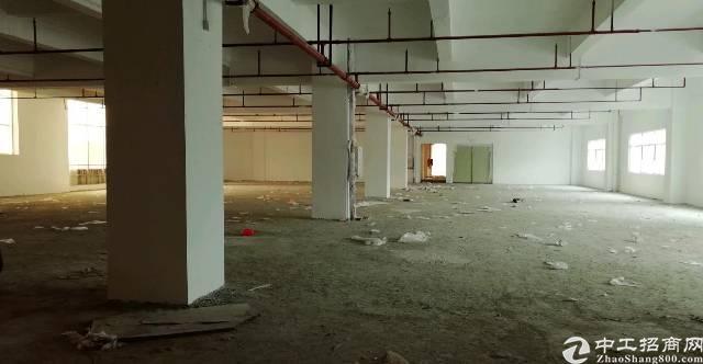 茶山卢屋原房东厂房分租1~2楼-图3