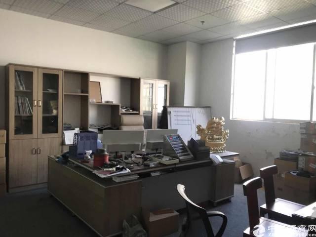 观澜松元新村工业园新出一楼310平方低价招租
