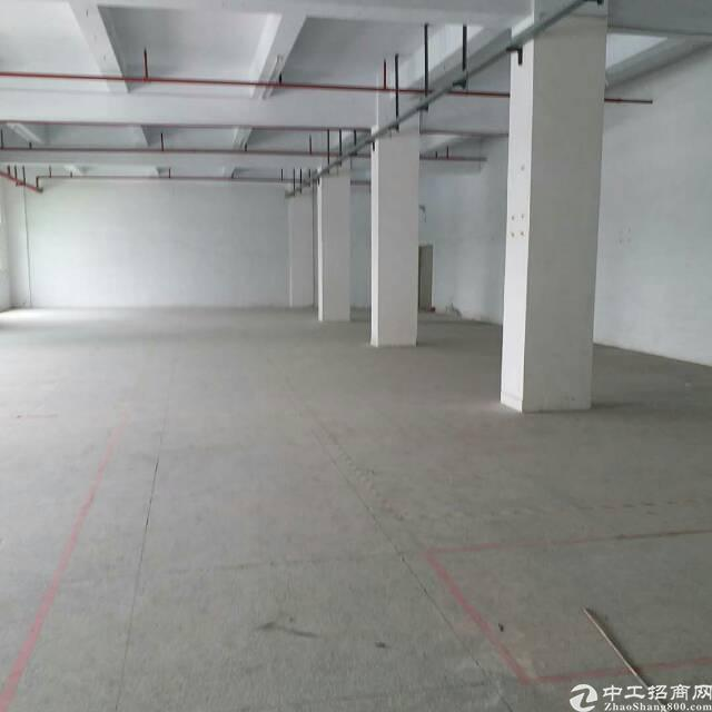 洲石路727创梦城办公场地2750平米出租