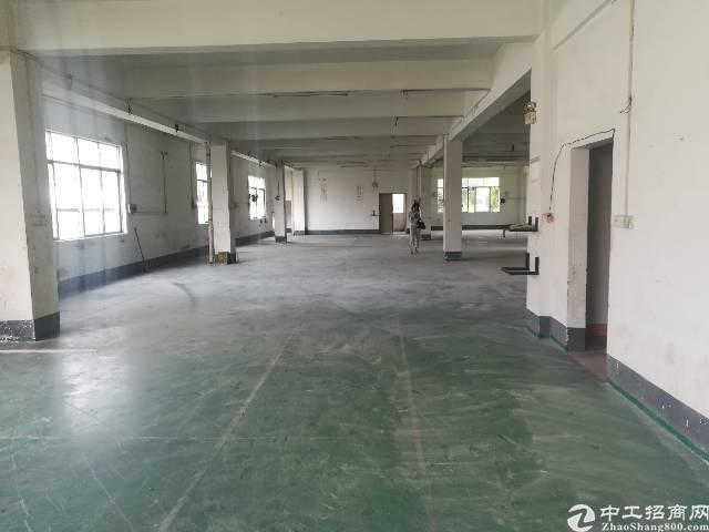 茶山新出一楼标准厂房800平