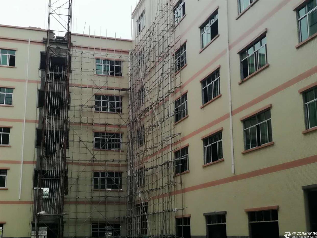 惠州园洲全新标准厂房10900平方