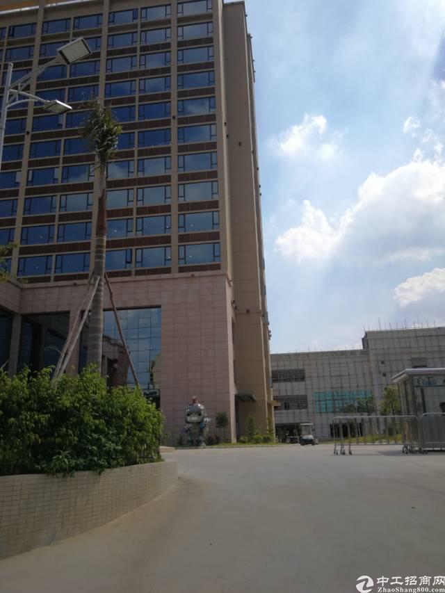 常平镇标准厂房十三层约130000平方出租