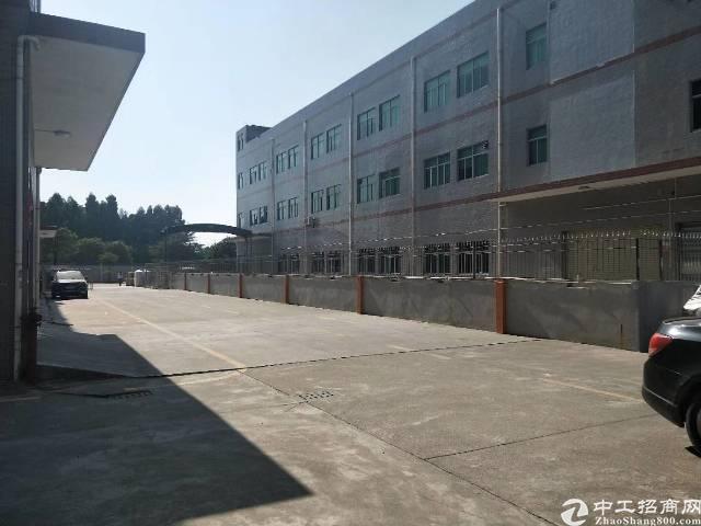 万江环城路旁原房东标准楼房500平方租9元