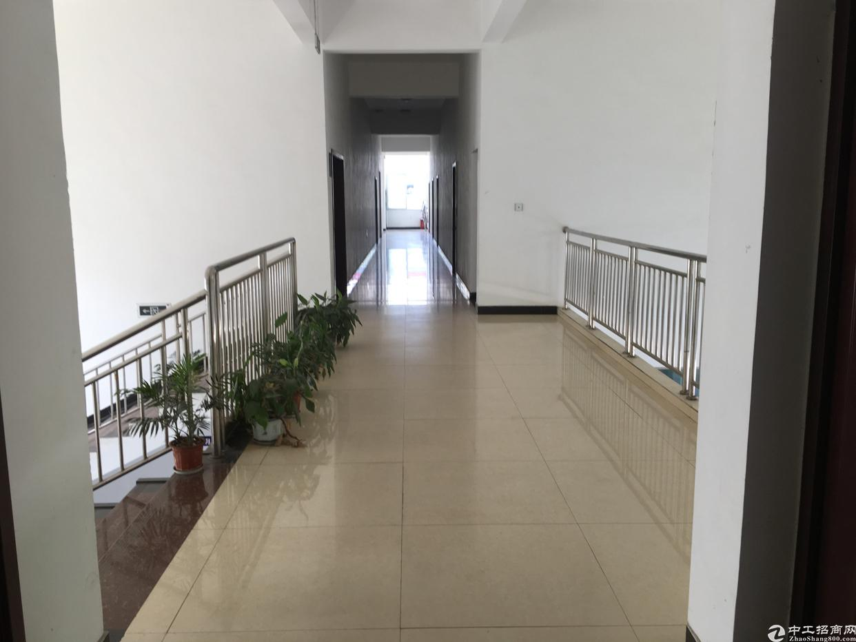 天府新区彭山青龙工业园30亩出售-图6