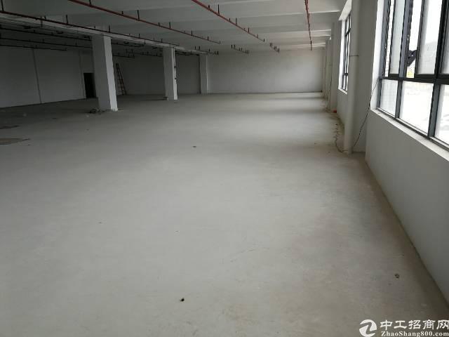 惠州仲恺高新区三栋新出920标准厂房出租