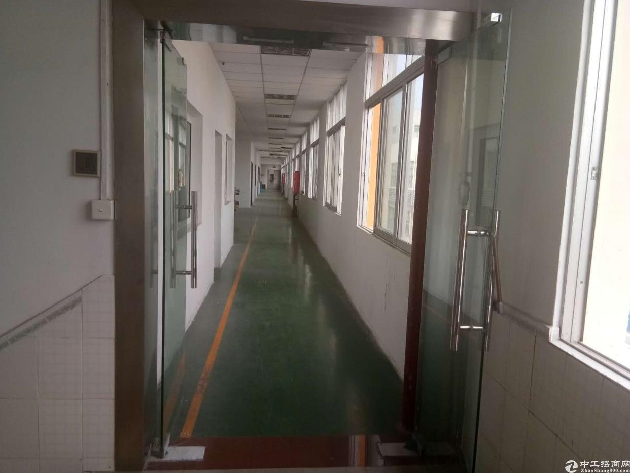 石岩塘头松白路边楼上655平带装修办公室
